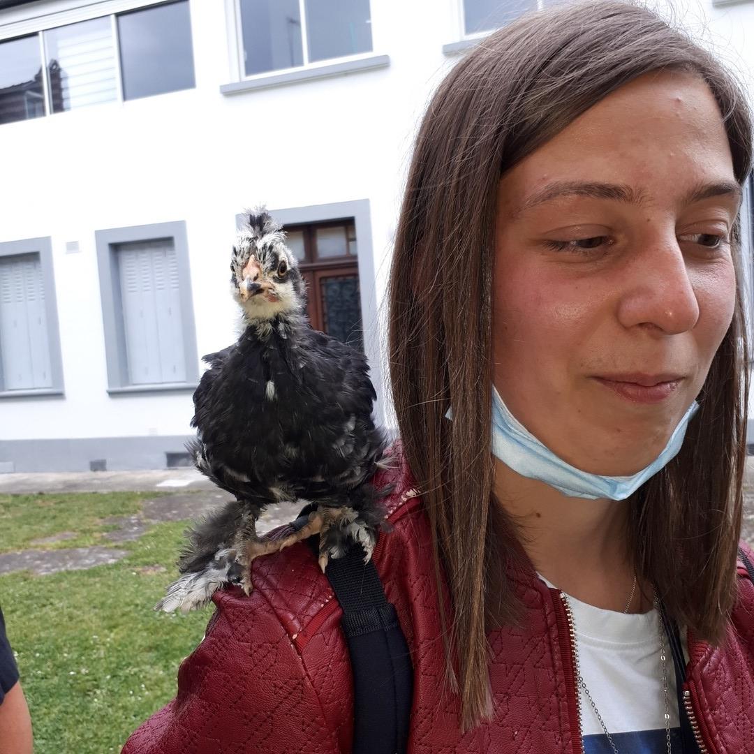 Aurélie courageuse ...!